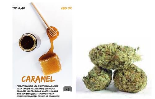 caramel-erba-bronze