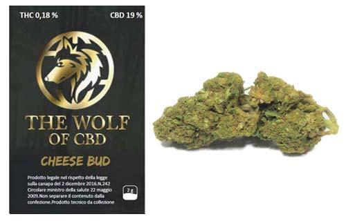 cheese-bud-full